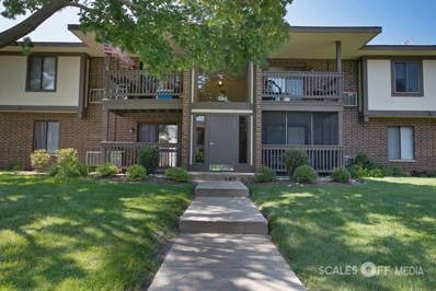 590 Somerset Lane UNIT 3, Crystal Lake, IL 60014 - #: 10466151