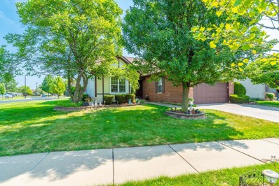 20956 W Orange Blossom Lane, Plainfield, IL 60544 - #: 10467298