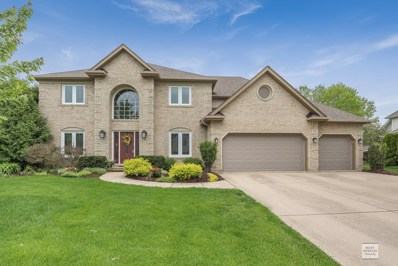 1411 Frenchmans Bend Drive, Naperville, IL 60564 - #: 10467665