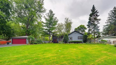 111 Crescent Road, Fox River Grove, IL 60021 - #: 10468225