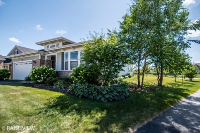 2903 Chevy Chase Lane, Naperville, IL 60564 - #: 10468677