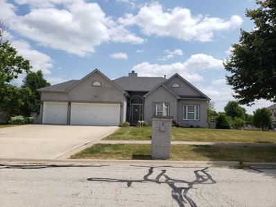 13219 Ione Street, Plainfield, IL 60585 - #: 10469184