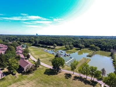 58 Vail Colony UNIT 2, Fox Lake, IL 60020 - #: 10469278