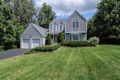 1215 S Summit Street, Barrington, IL 60010 - MLS#: 10469549