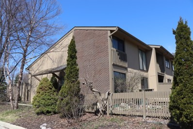 705 Acadia Court, Roselle, IL 60172 - #: 10471211