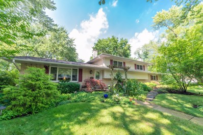 89 Bunting Lane, Naperville, IL 60565 - #: 10471477