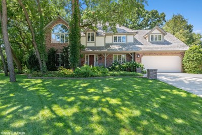 340 Great Oak Court, Naperville, IL 60565 - #: 10471670