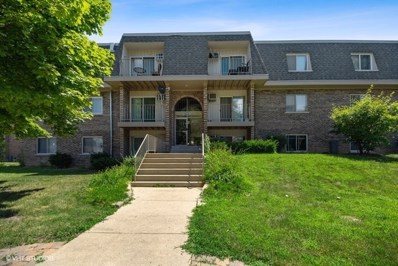 851 Blossom Lane UNIT 208, Prospect Heights, IL 60070 - #: 10472693