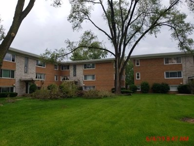 6850 W Lode Drive UNIT 2B, Worth, IL 60482 - #: 10472968