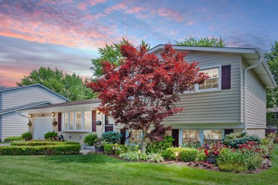 807 W Burr Oak Drive, Arlington Heights, IL 60004 - #: 10474163