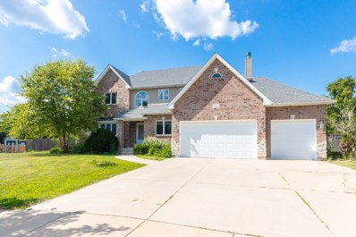 111 Old Wood Court, Aurora, IL 60506 - #: 10474438