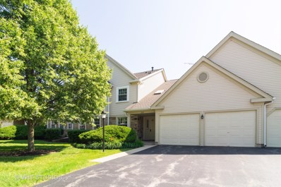 205 Glasgow Lane UNIT V1, Schaumburg, IL 60194 - #: 10476112