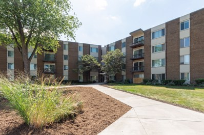 140 W Wood Street UNIT 332, Palatine, IL 60067 - #: 10476473