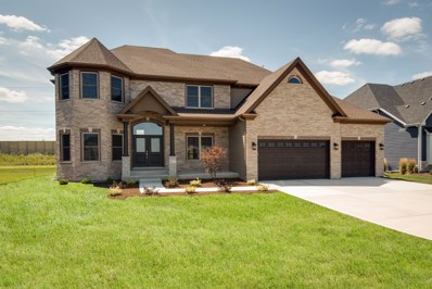 4224 Chinaberry Lane, Naperville, IL 60564 - #: 10476965