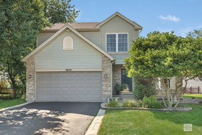 2059 Winding Lakes Drive, Plainfield, IL 60586 - #: 10477073