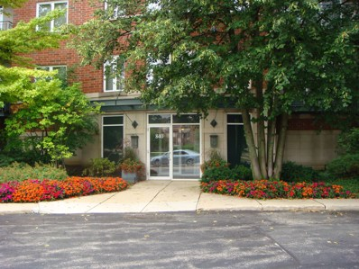 840 Weidner Road UNIT 403, Buffalo Grove, IL 60089 - #: 10477246