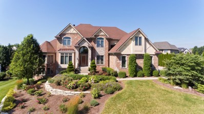 20492 Abbey Drive, Frankfort, IL 60423 - MLS#: 10477393