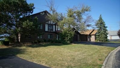 9844 Terrace Court UNIT B2, Palos Park, IL 60464 - #: 10478197