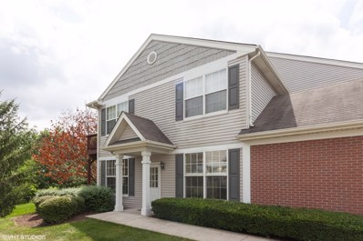 24120 W Walnut Circle, Plainfield, IL 60585 - #: 10478453