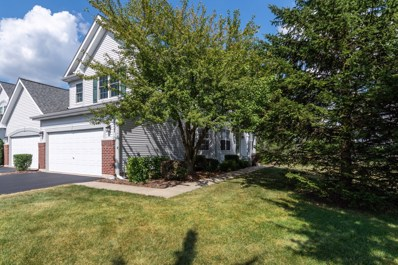 1257 Appaloosa Way, Bartlett, IL 60103 - #: 10479579