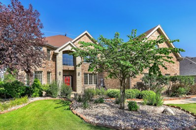 22243 Mary Drive, Frankfort, IL 60423 - #: 10480207