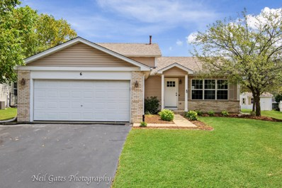 6 Asbury Court, Lake In The Hills, IL 60156 - #: 10480342