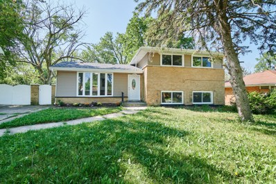 302 W 17th Street, Chicago Heights, IL 60411 - #: 10480348