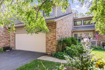 19 Brook Lane, Palos Park, IL 60464 - #: 10480659