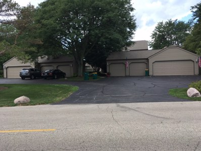 612 A  Shoreline UNIT B687, Lake Barrington, IL 60010 - #: 10480734