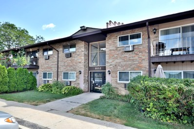 802 E Old Willow Road UNIT 111, Prospect Heights, IL 60070 - #: 10480905
