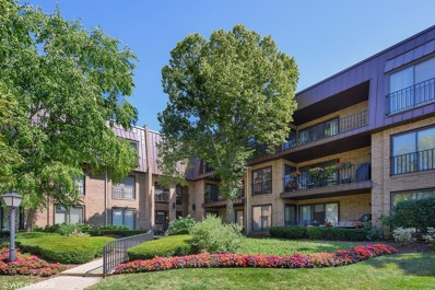 2 The Court Of Harborside UNIT 202, Northbrook, IL 60062 - #: 10480975