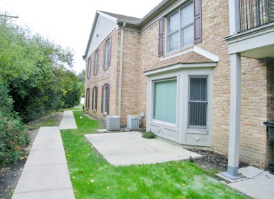 1785 Sussex Walk UNIT D, Hoffman Estates, IL 60169 - #: 10481172
