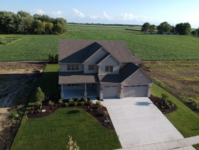1134 Stacey Drive, New Lenox, IL 60451 - #: 10481262