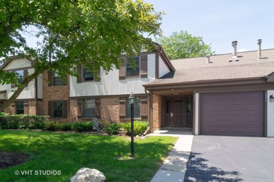 226 Brookston Drive UNIT C1, Schaumburg, IL 60193 - #: 10481378