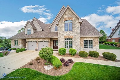 9940 Folkers Drive, Frankfort, IL 60423 - #: 10481447
