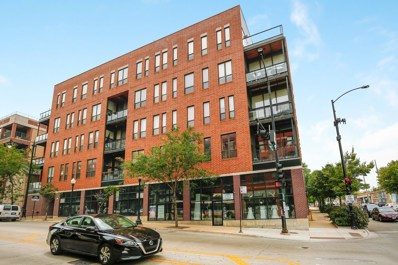 1610 S Halsted Street UNIT 203, Chicago, IL 60608 - #: 10482173