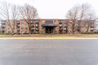 239 N Mill Road UNIT 204, Addison, IL 60101 - #: 10482423