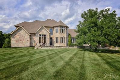 2007 Bull Ridge Drive, McHenry, IL 60050 - #: 10482496
