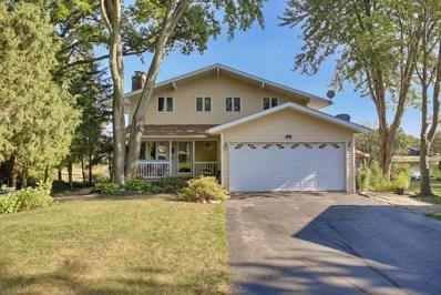 704 Bayshore Terrace, Loda, IL 60948 - #: 10483470