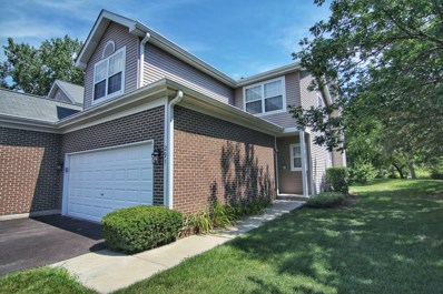 291 Partridge Court, Algonquin, IL 60102 - #: 10483512