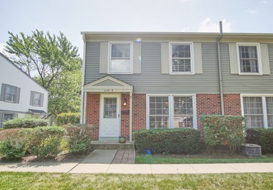 1171 Bunker Hill Court UNIT B, Wheaton, IL 60187 - #: 10484957