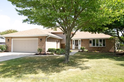 15229 S Indian Boundary Line Road, Plainfield, IL 60544 - #: 10485004