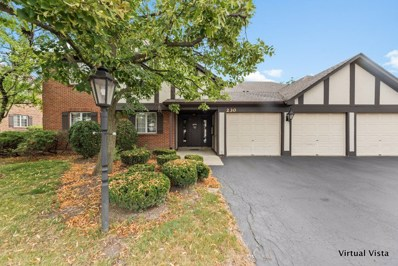 230 Windsor Lane UNIT D, Willowbrook, IL 60527 - #: 10485013