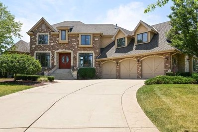 347 S Walnut Ridge Court, Frankfort, IL 60423 - #: 10485283