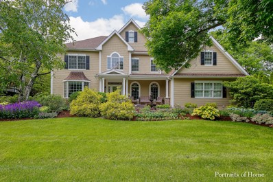 25W176  Mayflower, Naperville, IL 60540 - #: 10486076