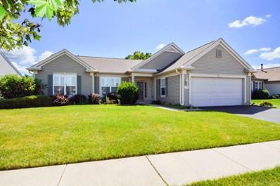 13356 Dakota Fields Drive, Huntley, IL 60142 - #: 10486950