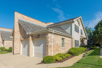1902 W Ashbury Lane UNIT 1902, Inverness, IL 60067 - #: 10487350