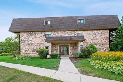 9180 South Road UNIT A, Palos Hills, IL 60465 - #: 10487623