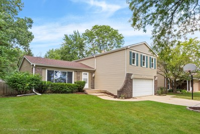 6S130  Country, Naperville, IL 60540 - #: 10487914