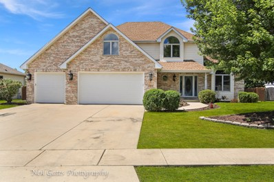 13164 Sunderlin Road, Plainfield, IL 60585 - #: 10488057